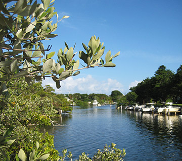 Earman River, North Palm Beach